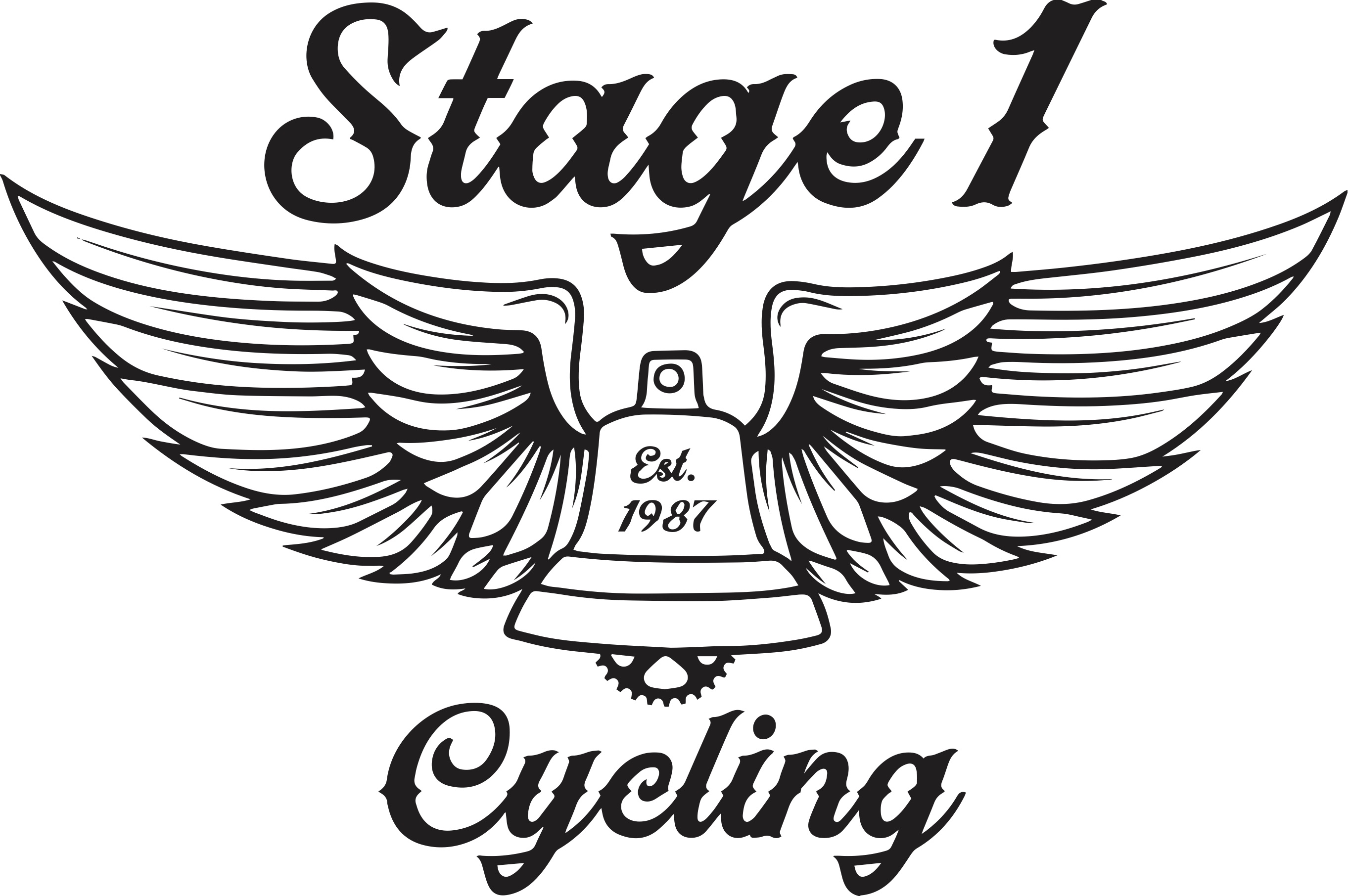 Stage 1 Cycles